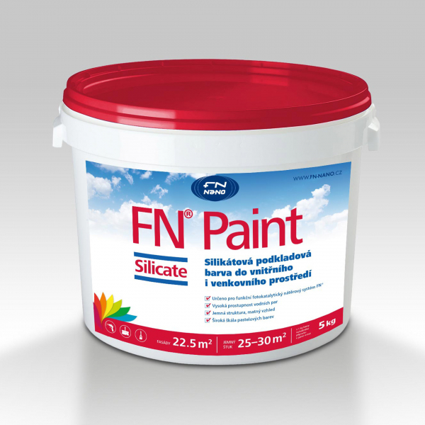 FN® PAINT SILICATE, 5KG
